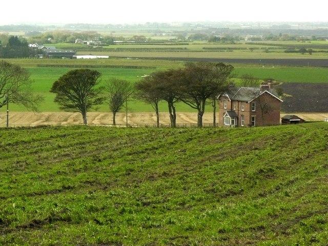 Firs Farm, Clieves Hills