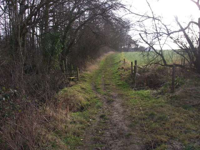 Windrush Way by No Man's Patch