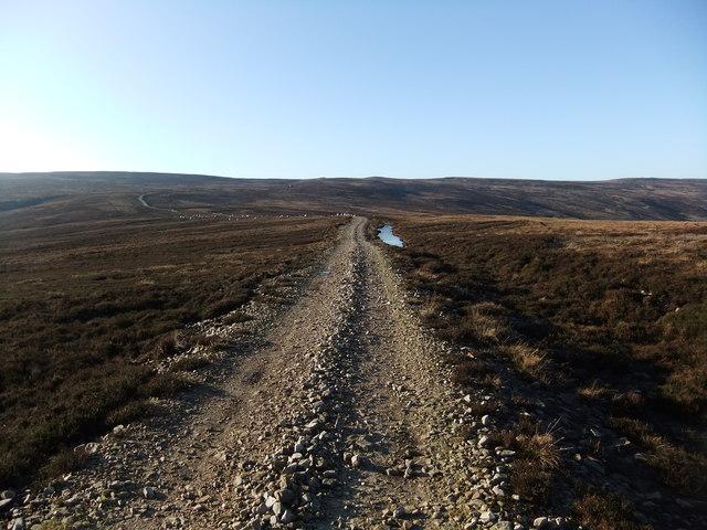 Knarsdale Forest road