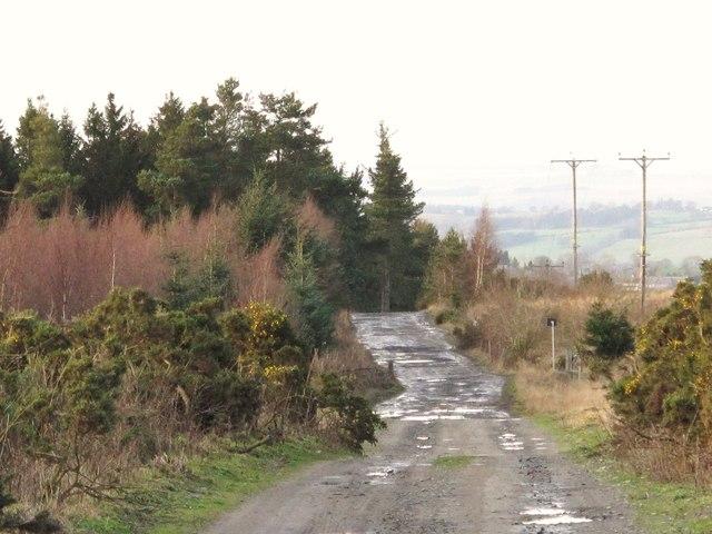 Coal Road southeast of Wheatfield Plantation