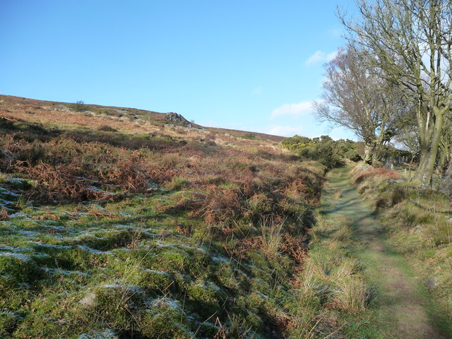 Path around the Stiperstones ridge