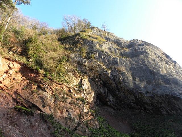 Rocks in the Avon Gorge