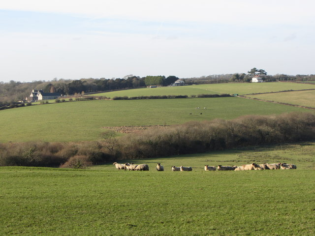 Fields near Llanmihangel