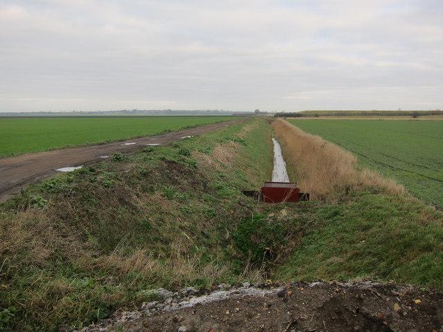 Ditch off West Fen Road