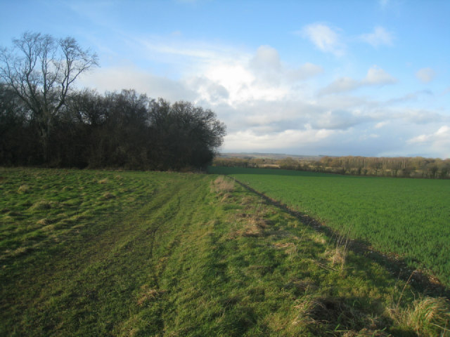 Southeast corner of South Wood