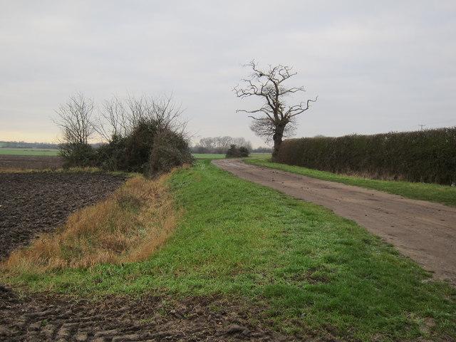 Hale Fen Lane