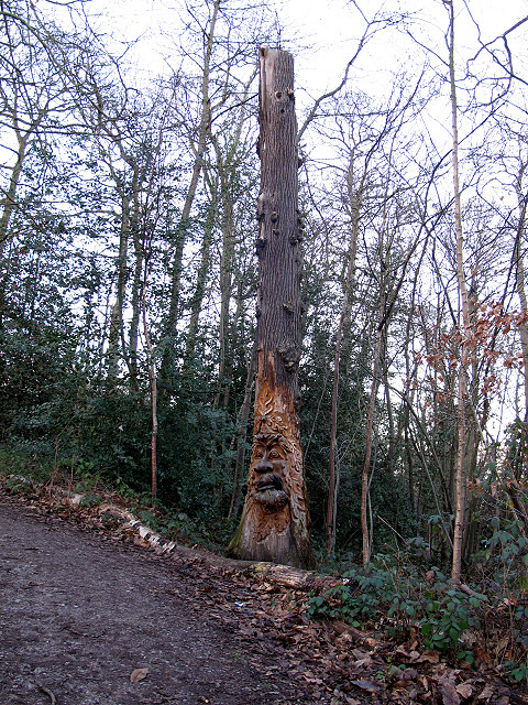 Carved tree trunk