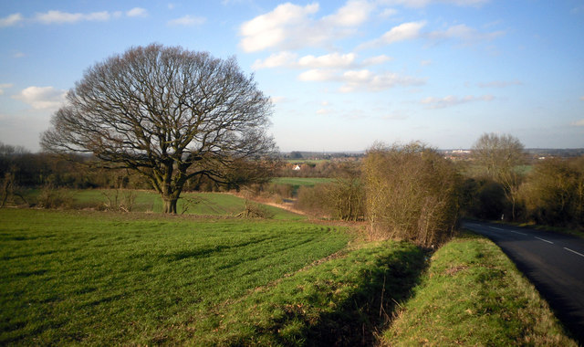 Sires Hill