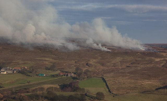 Controlled burning on Castleton Rigg