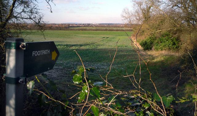 Footpath to Long Wittenham