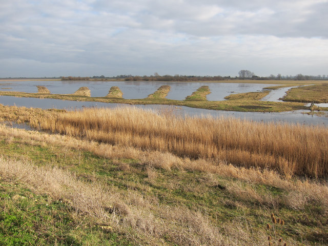 Ouse Washes RSPB reserve