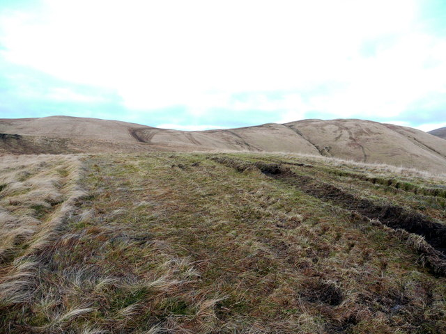 Looking up the south-west ridge of Whitehope Heights