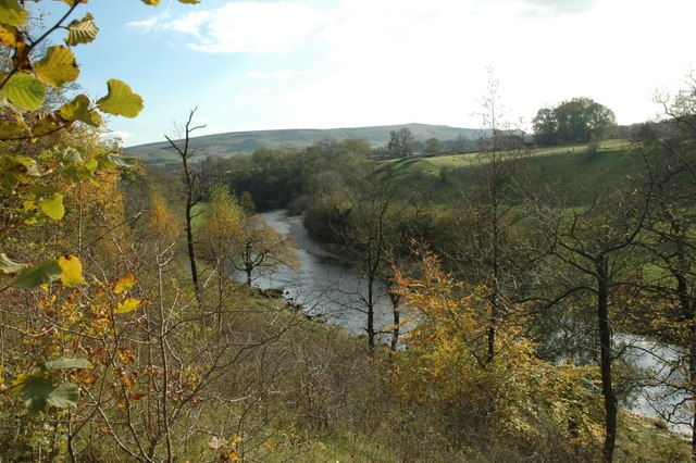 River Wharfe from Grass Wood