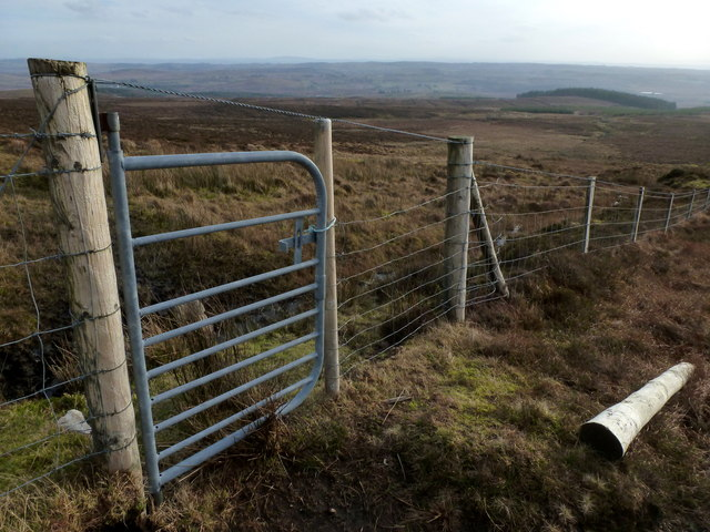 Singing Gate at Luaghnabrogue