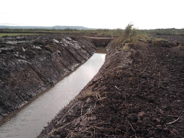 New dam for Poulton court wetland creation scheme