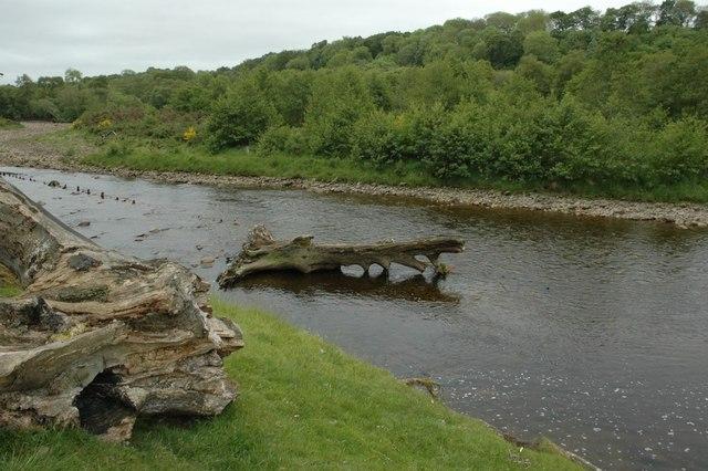 River South Tyne at Diamond Oak