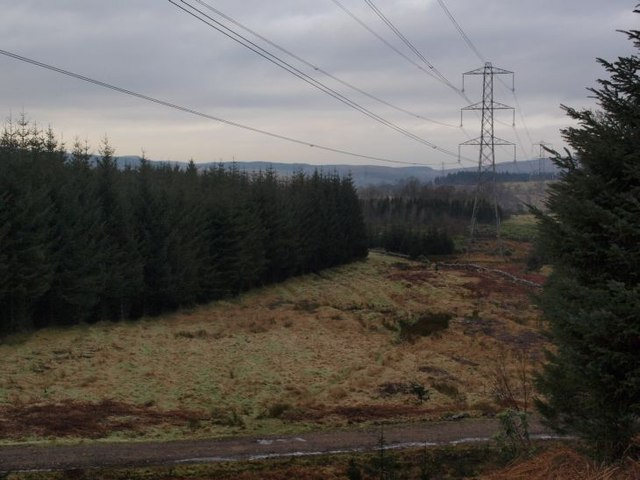 Pylons in Carglas plantation