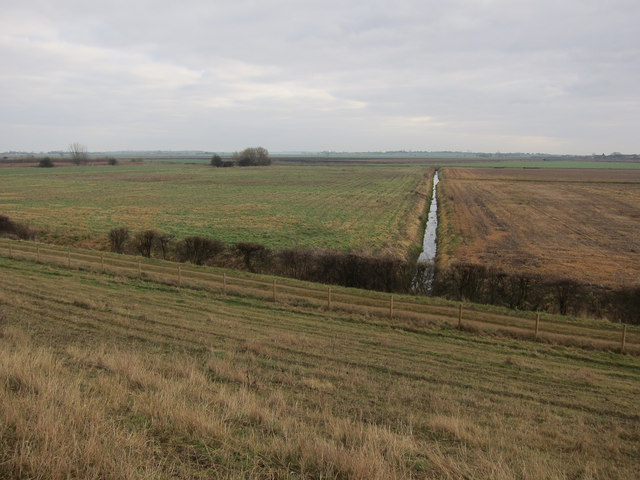 Great Dams Fen