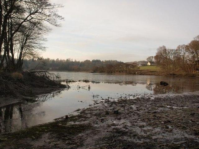Carbeth Loch in winter
