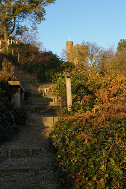 Leith Hill Tower from the steps down to Windy Gap car park