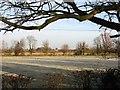 TL4964 : Frosty fields on a January morning by John Sutton