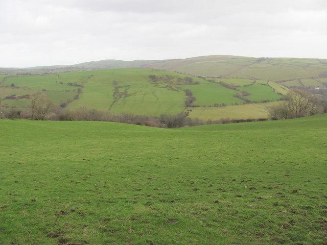Field heading down towards Pant-yr-awel