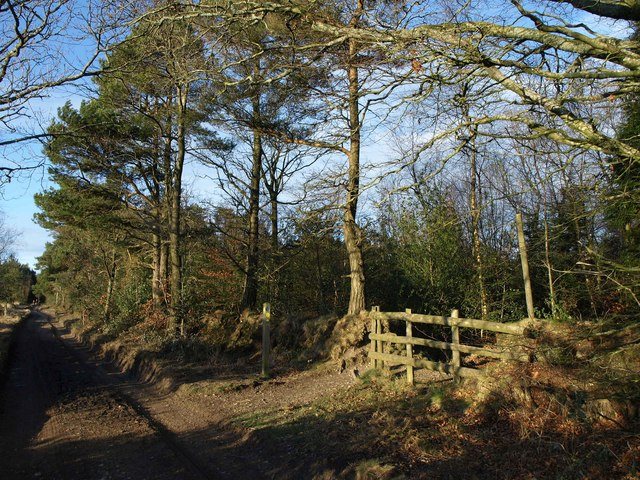 Path and bridleway junction, Mutter's Moor