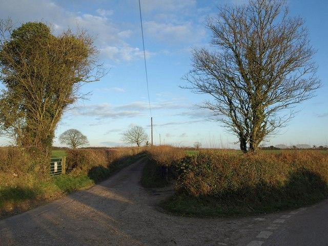 Northern Lane