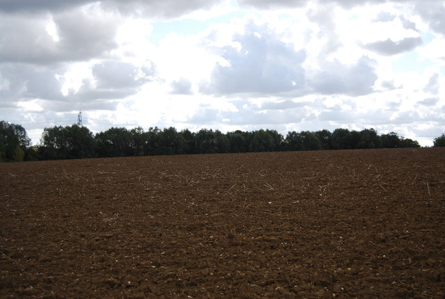 View south from the bridleway near Akenham Hall