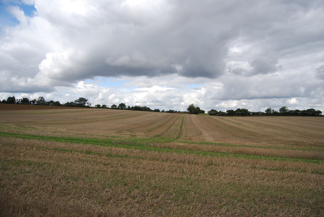 Farmland near Bower Farm