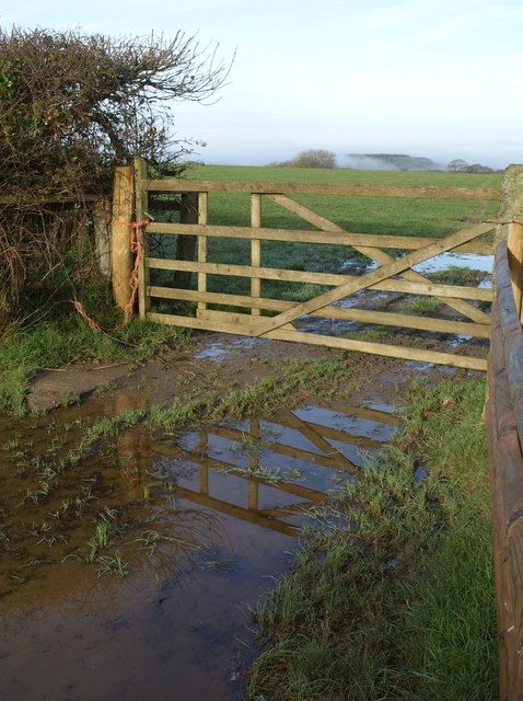 Gate and puddle north of Church Hill Cross