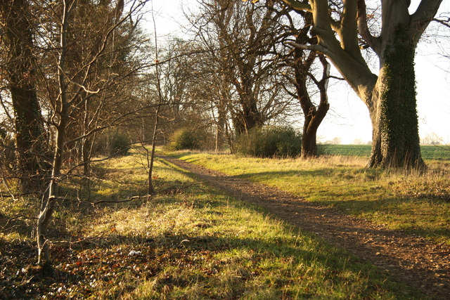 The Old Coach Road