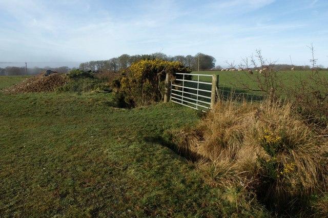Gateway near Little Incott Farm