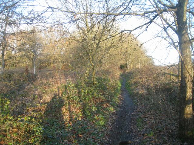 Wayfarer's Walk by the M3