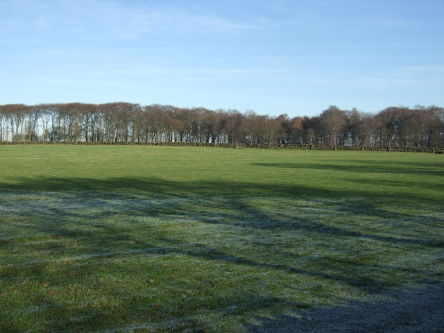 Farmland near Bramhope