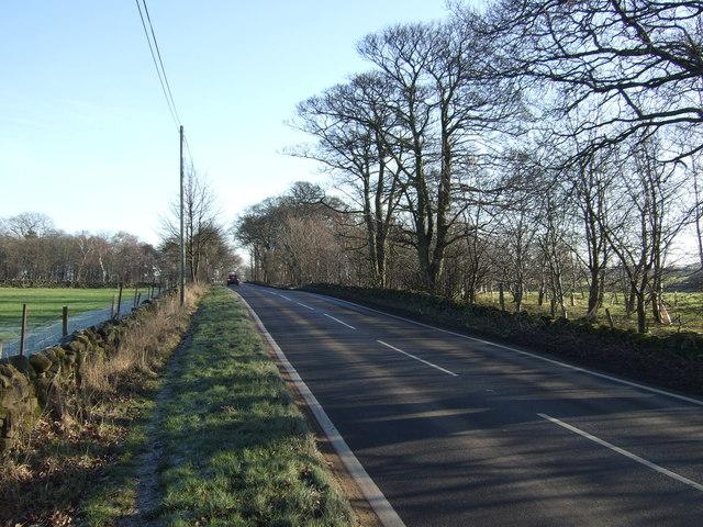 Kings Road heading east