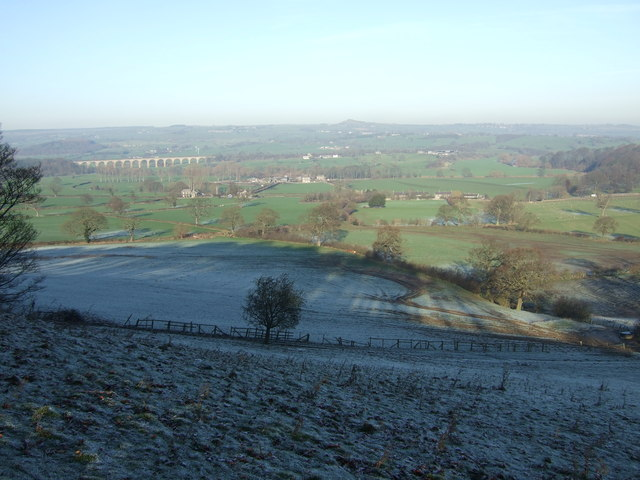 Grazing land near Howgarth Wood