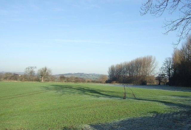 Farmland off Arthington Lane