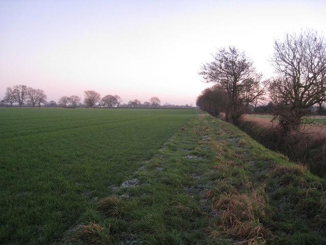 Farmland near Pincheon Green