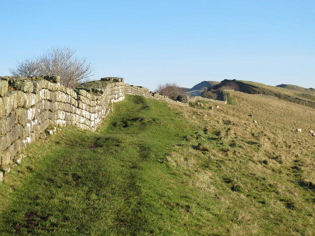 Hadrian's Wall above Cawfield Crags