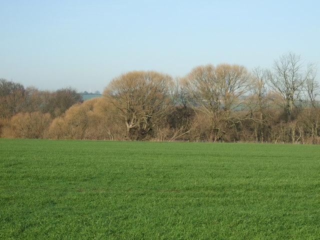 Farmland north of the A659