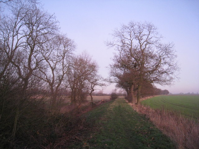 Footpath on an embankment