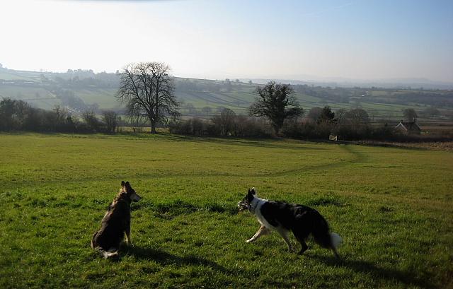 Hardington Moor