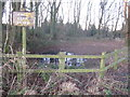 SJ8179 : Paddockhill triangle, Mobberley - the hidden source by Peter Turner