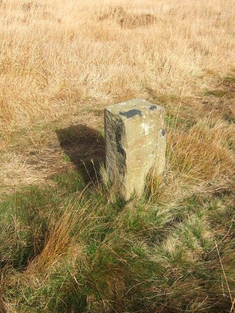 Marker stone on path across Hodder Bank Fell