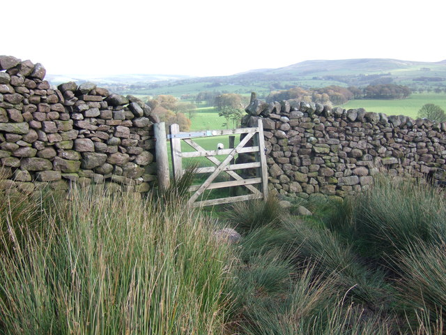 Gate in stone wall
