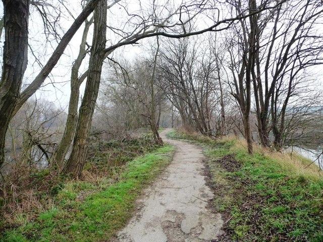 The Trans Pennine Trail near Skelton Grange