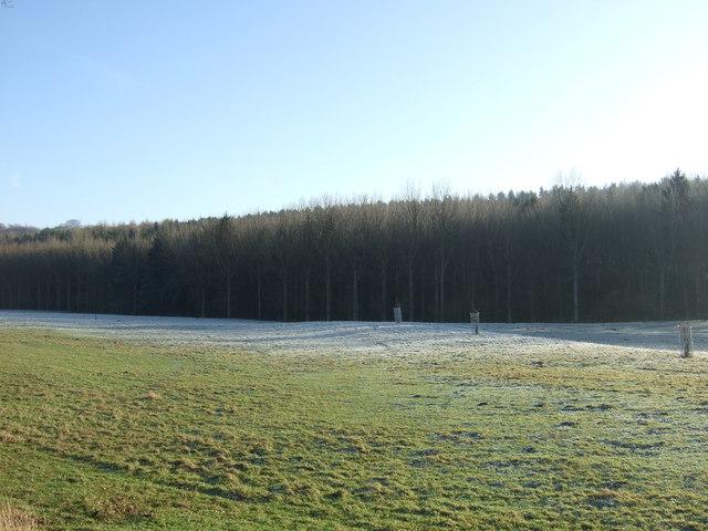 Farmland near Harewood