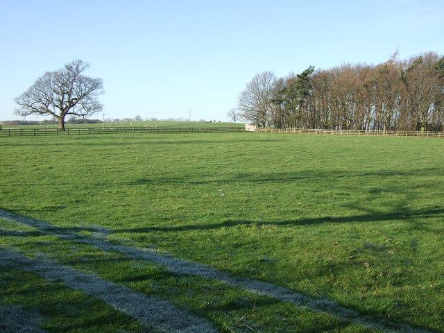 Farmland, Moor End