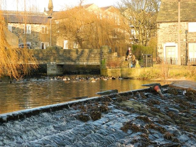 Silsden Duck Pond & Waterfall
